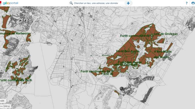 Géoportail: données cartographiques et toponymiques
