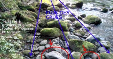 Un placier alluvionnaire à gros galets sur roche mère ardoisière, en Ariège