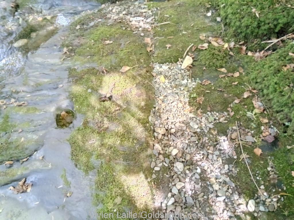 Prospection aurifère sur du bedrock ardoisier, en bordure d'une rivière ariégeoise