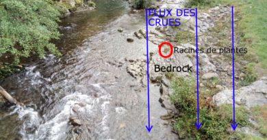 Test d'un échantillon de touffes de racines d'herbes, prises sur du bedrock
