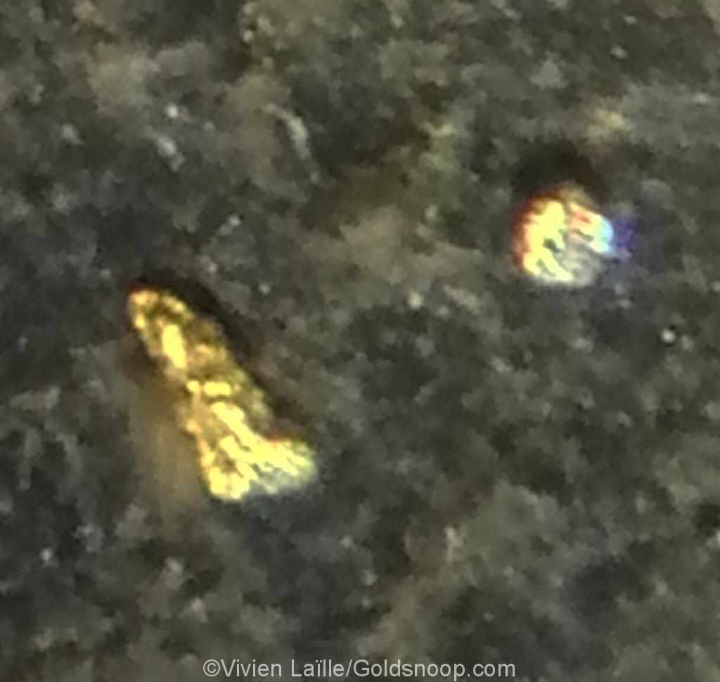 De l'or alluvionnaire dans des petites marmites de bedrock ardoisier