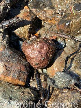 Cours d'orpaillage: Les types de gisements aurifères dans la nature