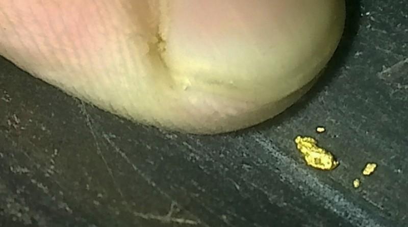 Placier aurifère de crues d'eau, avec hématites, et des paillettes d'or